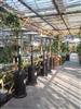 汉中液化气取暖器-榆林伞形取暖器-安康燃气取暖器-商洛户外灯型取暖器
