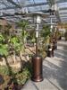 五家渠燃气取暖器-吐鲁番伞形取暖器-阿克苏液化气取暖器-阿图什灯型取暖器
