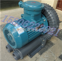 防爆漩涡气泵/南京漩涡风泵-高压防爆气泵