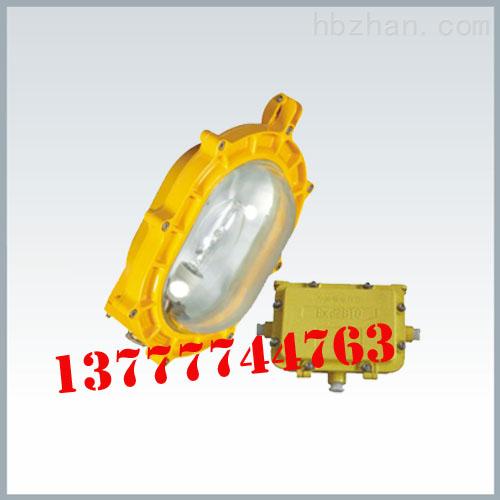 BFE8120内场防爆应急灯 防爆应急灯价格