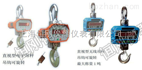 芜湖市30吨直视电子吊磅秤