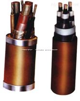 ZR-DJYVP_阻燃計算機控製電纜國標電纜