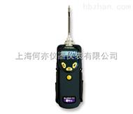 华瑞ppbRAE3000VOC检测仪PGM-7340