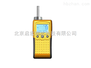 MIC-800-NH3-便携式氨气检测仪特价