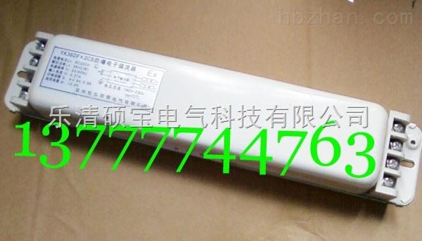 YK36DF×2CS防爆荧光灯电子镇流器