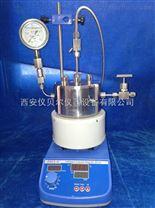 微型高压反应釜仪贝尔