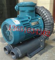 防爆旋涡风机/高压旋涡气泵