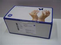 GE Healthcare Streptavidin HP SpinTrap Buffer Kit