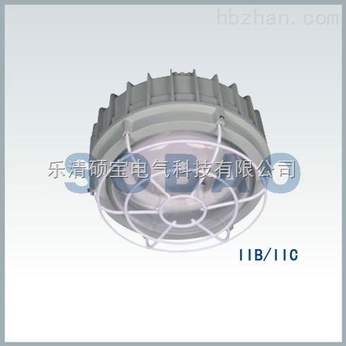 防爆环形应急荧光灯(IIB、IIC)