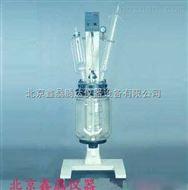 RV-620-2型真空反应器(20L)