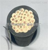 CEFR-3*1+1*1电缆CEFR阻燃船用电缆