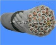 CEFR橡套软电缆