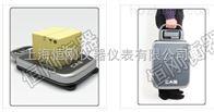 4859醴陵100kg快递公司专用台称牌子