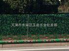 天津印花绿化防寒布专卖店—东丽区防寒印花绿化布—印花无纺布价格