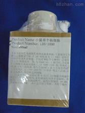 樹鼩皮膚成纖維樣細胞特價;TSHS4