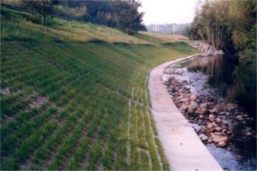 生态袋是改造护坡绿化的最好的生态袋.