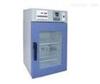 電熱恒溫培養箱DNP-9162-1