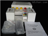 小鼠胰岛素样生长因子2(IGF-2)ELISA分析试剂盒