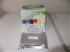 豚鼠卵清蛋白特异性IgG(OVA sIgG)ELISA分析试剂盒