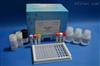 猪Ⅱ型胶原(Col Ⅱ)ELISA试剂盒