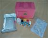 猴白介素2(IL-2)ELISA试剂盒