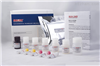 小鼠抗心磷脂抗体IgA(ACA-IgA)ELISA试剂盒