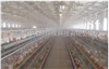 废气净化光催化除臭设备